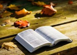 Mesaj biblic
