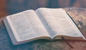 Text biblic